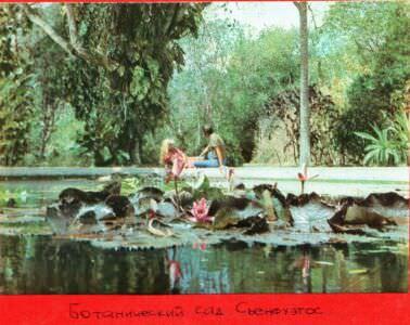 194. Ботанический сад, Сьенфуэгос