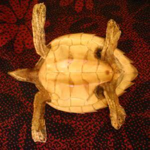 012. Черепашка, набивная, фото 7