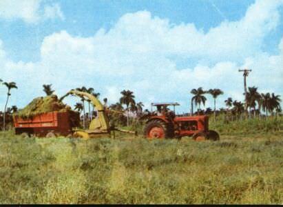 224. Сельское хозяйство