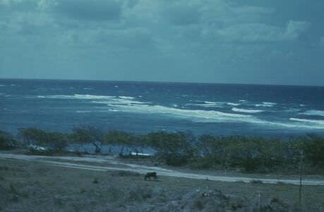 1974. Пляж Хибакоа