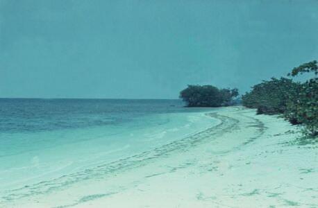1974. Пляж Сан-Педро