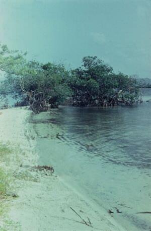 1975. Крошечный пляж в Баия Онда, Bahia Honda (Глубокая Бухта)
