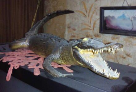 032. Кубинский крокодил, кайман