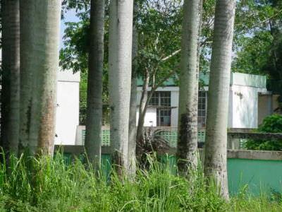 КМЦ, место, где был кинозал, вторая рота, фото 3