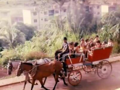 1982-1984. Повозка с детьми, 2 снимок