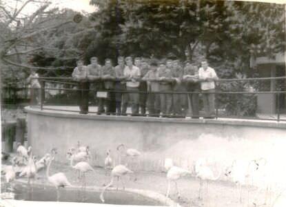 75. Выезд в Гавану, фото 4, в зоопарке
