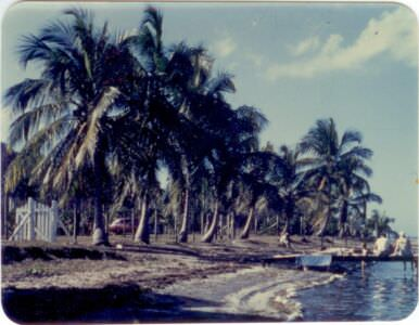 42. Побережье. Республика Куба. 1960-е гг.