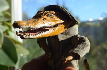 008. Крокодильчик, фото 2