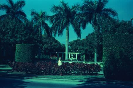 1968-1970. Пятая Авенида, фото 3