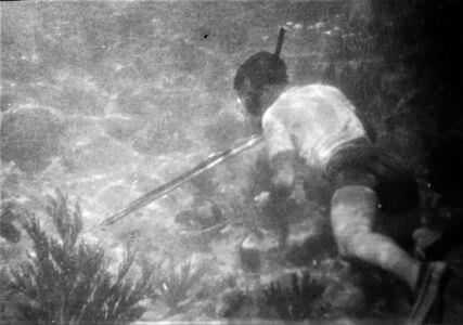 077. Подводная охота, фото 1