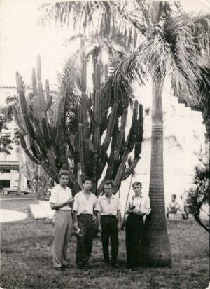 163. У этого кактуса все любили фотографироваться