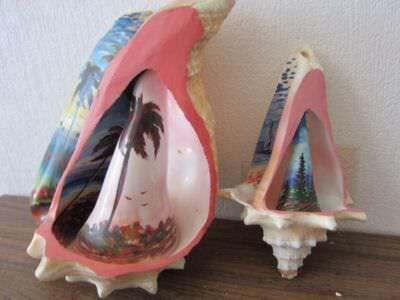 Две росписных внутри и снаружи морских раковины (рапаны)