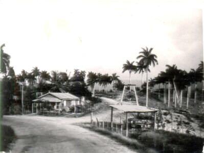 15. По дороге с сахарного завода на базу «Гранма»