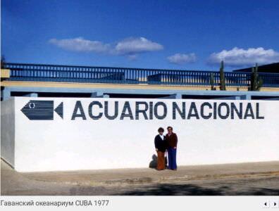 030. Океанариум в Гаване, 1977
