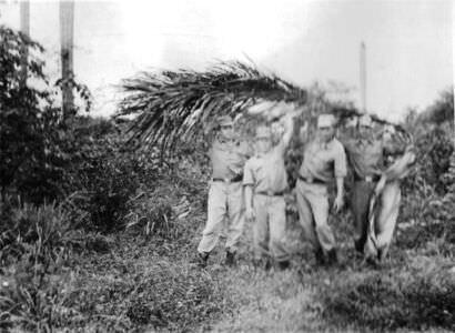 393. Служба на Кубе. Фото 20