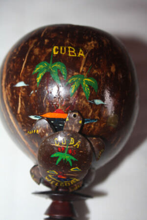Бокал из кокосового ореха