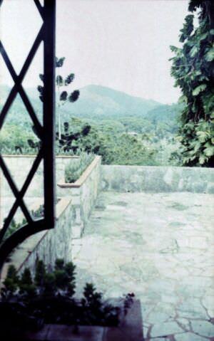1989-04-16. Сороа. Питомник орхидей, фото 14