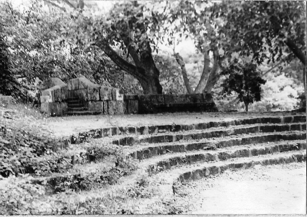 В парке Альмендарес, фото 2